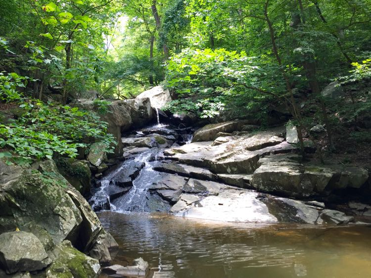 Dead Run waterfall hike and swimming hole in McLean Virginia