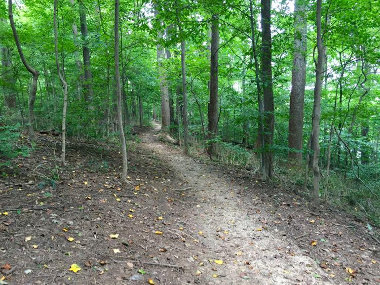 Turkey Run Loop Trail to Potomac
