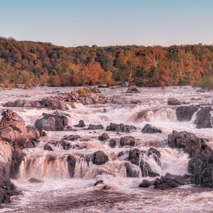 Fall at Great Falls. Photo credit: Chris Militzer