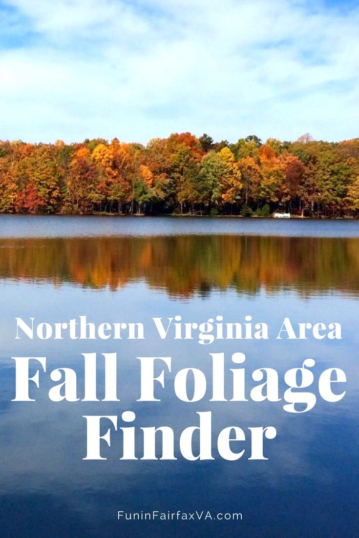 Northern Virginia Fall Foliage Best Places To See Fall Colors In The Region