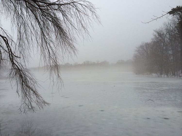 Fog covers Lake Thoreau Reston VA