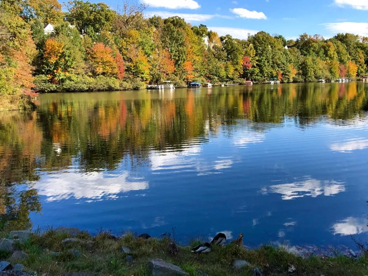 Lake Audubon from the lakeside path in Reston Virginia