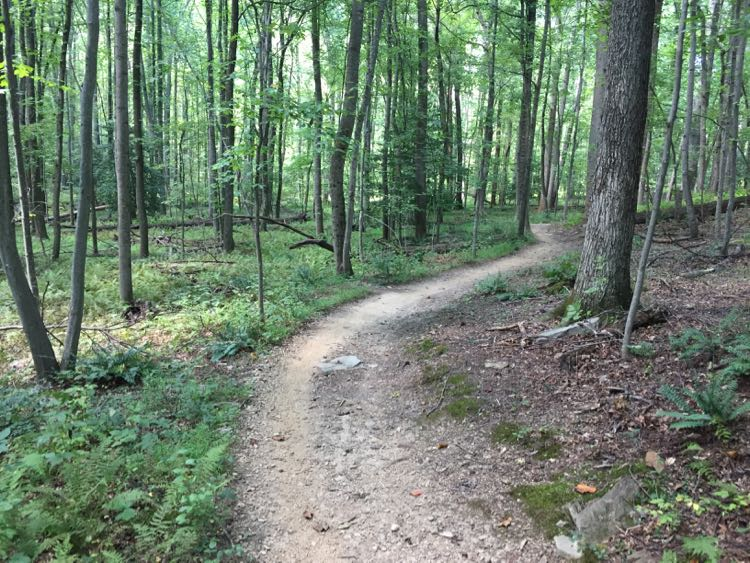 Lake Fairfax Park trail is great for hiking and biking in Reston VA