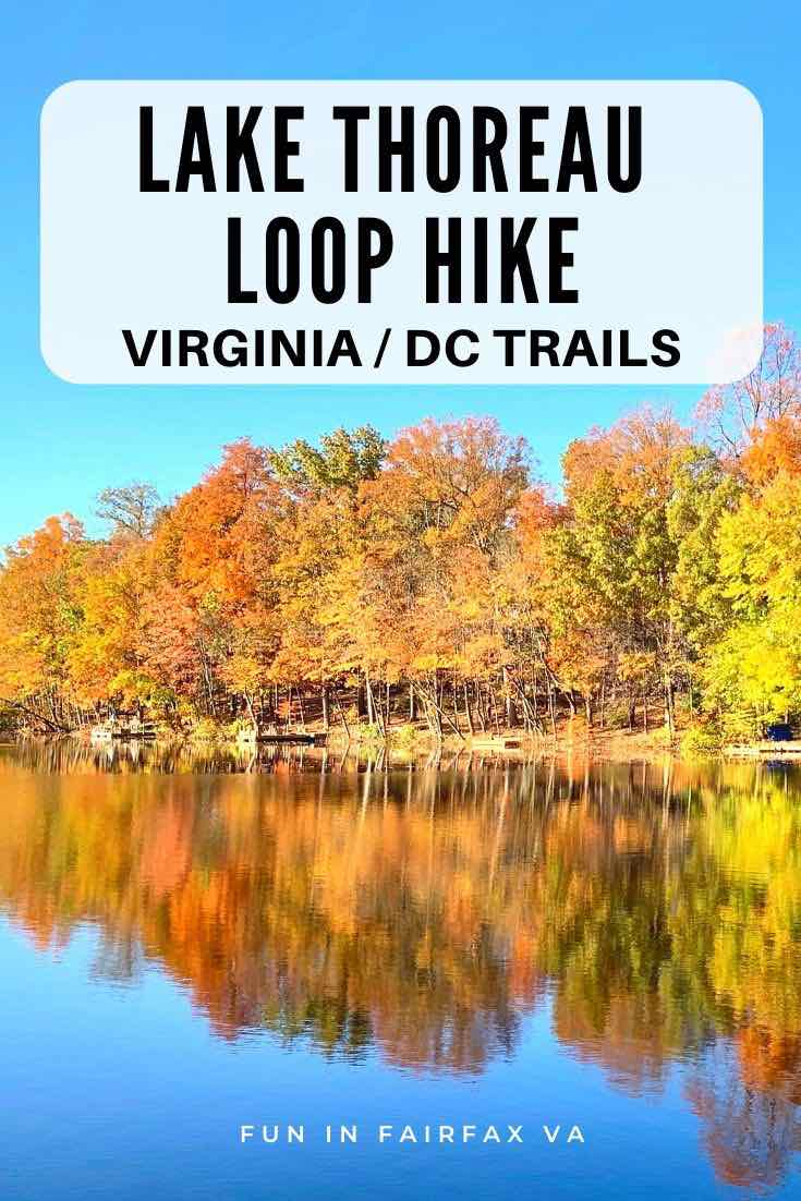Lake Thoreau Loop Hike with fall foliage reflections in Reston Virginia