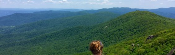 Shenandoah National Park summer view