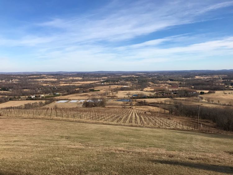 Virginia Piedmont view from Dirt Farm Brewing in Bluemont Virginia