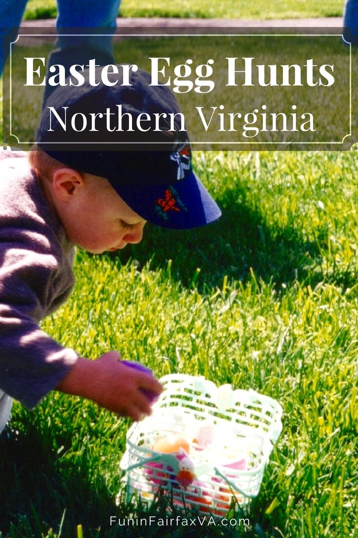 Easter Egg Hunts in Northern Virginia. A complete guide to Easter Egg Hunts and family-friendly celebrations of spring in Northern Virginia parks, farms, zoos, and towns.