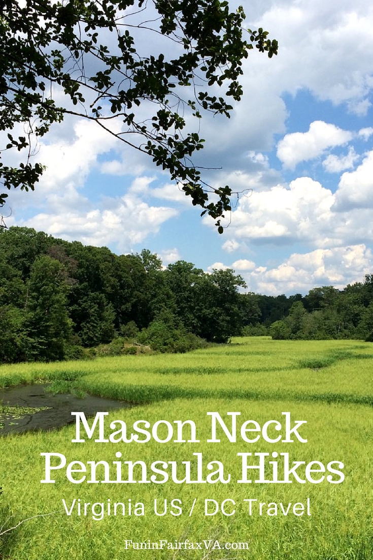 Virginia US Travel / Hiking. The Mason Neck peninsula in Northern Virginia offers excellent hiking on national and state parkland close to Washington DC.
