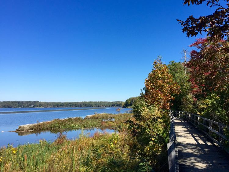 Fall foliage lines the Bay View Trail boardwalk at Mason Neck State Park in Northern Virginia