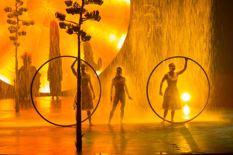 LUZIA in Tysons rain and hoops