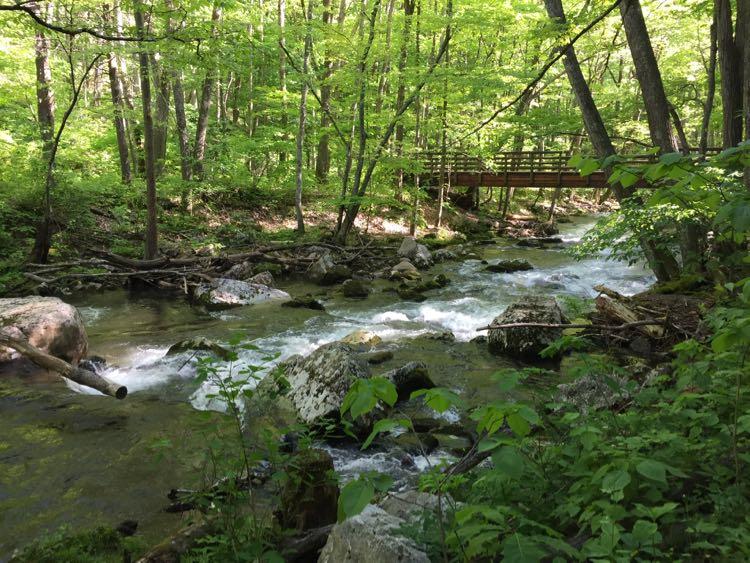 Cascade Falls trail hiking in Virginias Blue Ridge