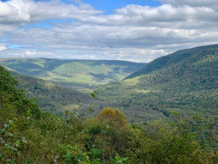 Baughman Trail Overlook in Ohiopyle State Park PA