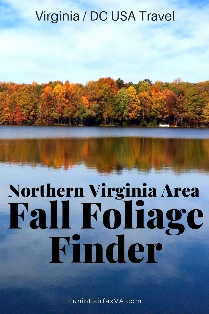 Virginia Travel. Fall Foliage. Find the best places to see Northern Virginia fall foliage, for locals and visitors seeking beautiful fall colors and fun outings near Washington DC.
