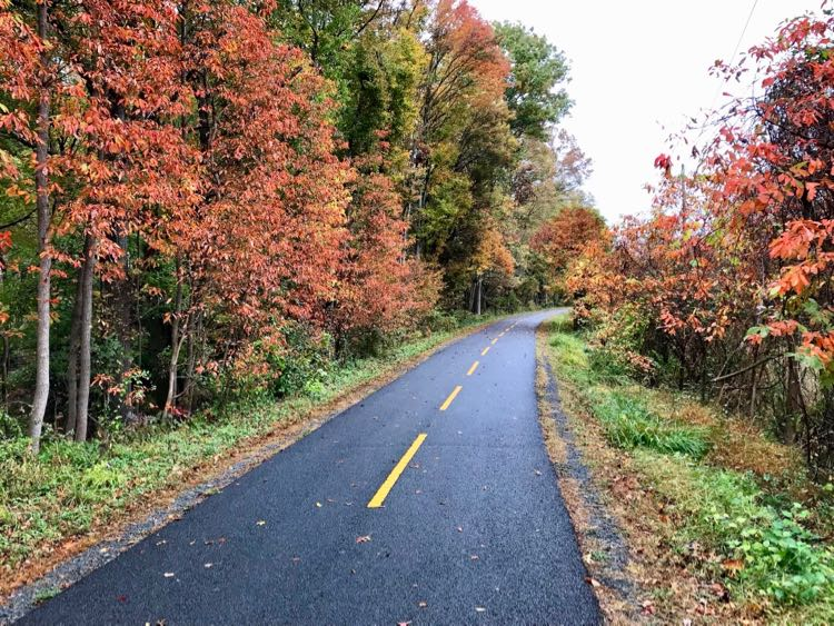 Fall is a beautiful time on the Washington and Old Dominion Trail in Northern VA