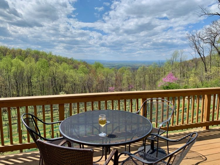 Winery with a view—Twin Oaks Tavern in Bluemont VA