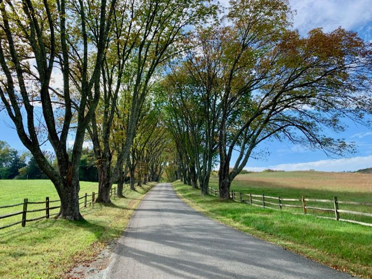 Road to James Monroe Highland in Charlottesville Virginia