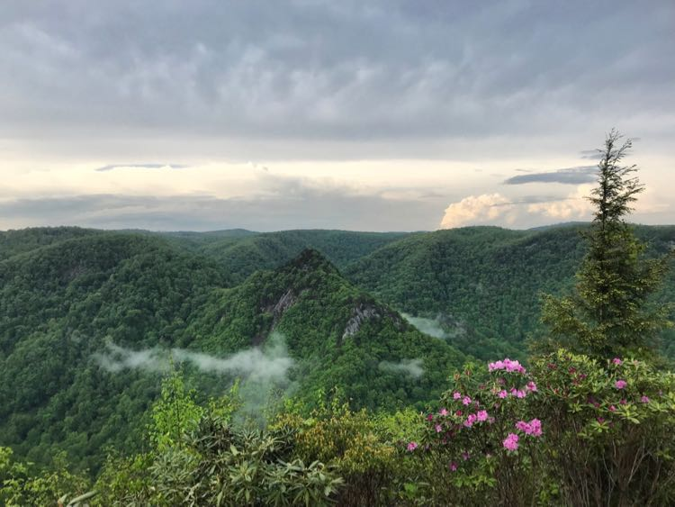 Hike to views of the Pinnacles of Dan and Blue Ridge Mountains