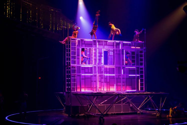 Trampolinists fill the big top with energy at VOLTA DC