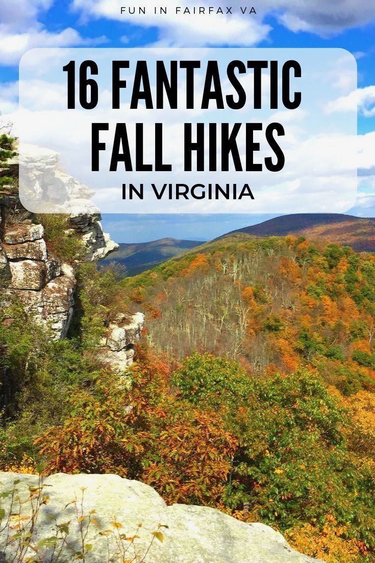 16 favorite fall hikes in Virginia to enjoy beautiful fall foliage and Autumn fun near Washington DC.