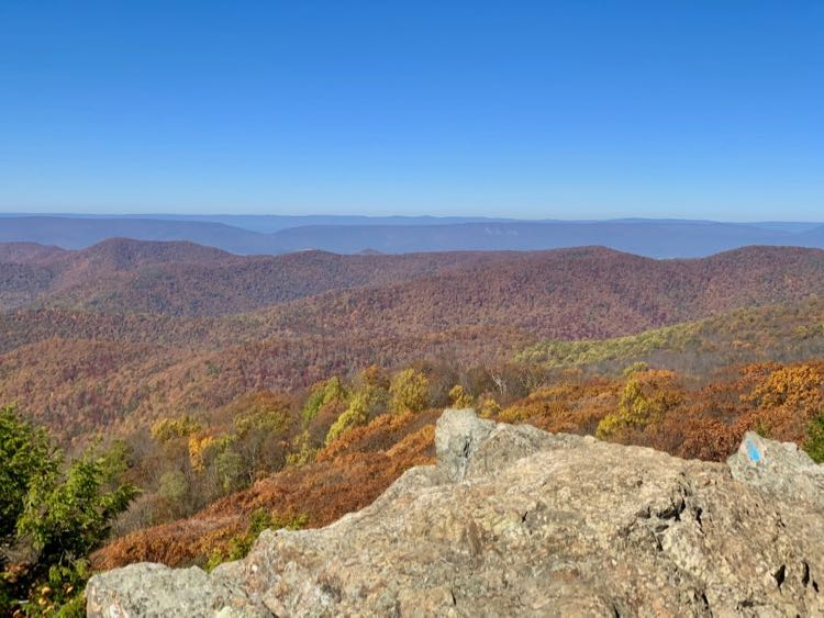 Bearfence Mountain fall view in Shenandoah National Park Central District