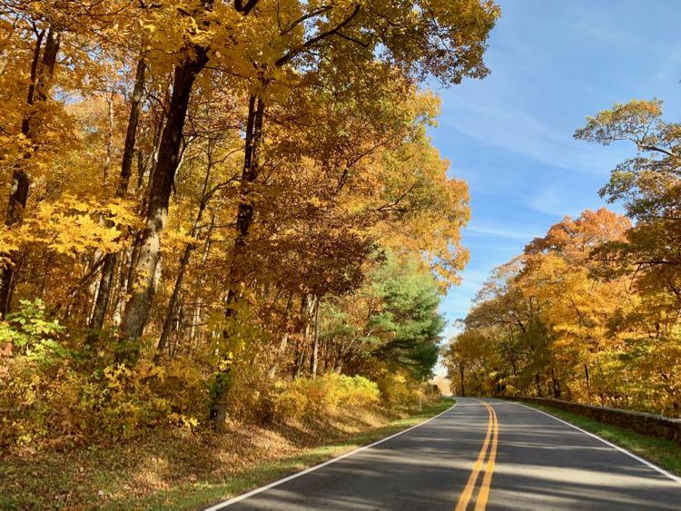 Fall foliage on Skyline Drive