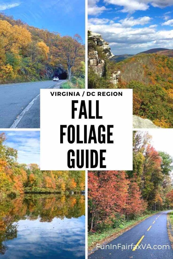 Discover the best places to see Northern Virginia fall foliage and enjoy Autumn beauty on fun fall outings in the Washington DC region.