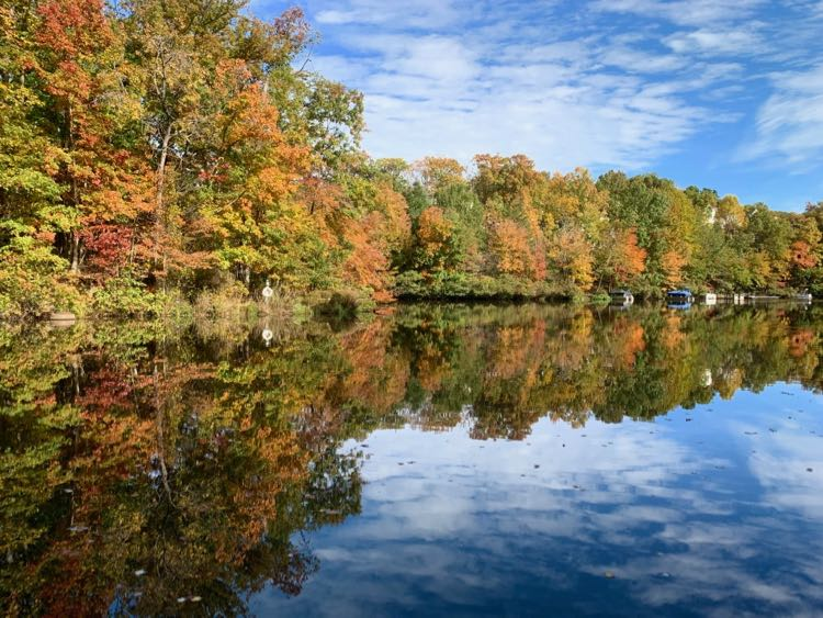 Fall foliage at Lake Audubon in Reston VA