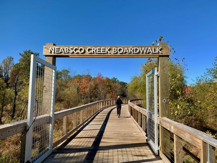 Neabsco Creek Boardwalk Hike in Northern Virginia