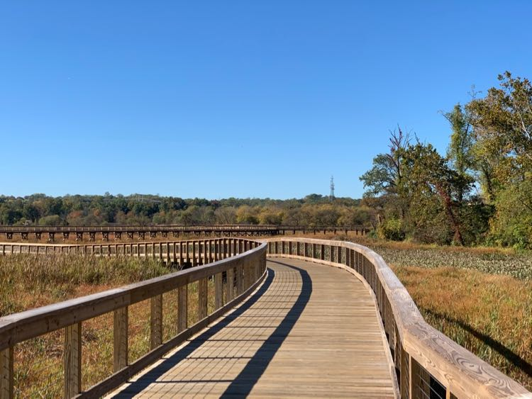 Boardwalk trail at Neabsco Creek