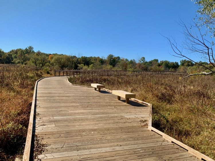 Open platform on Neabsco Creek Boardwalk Trail