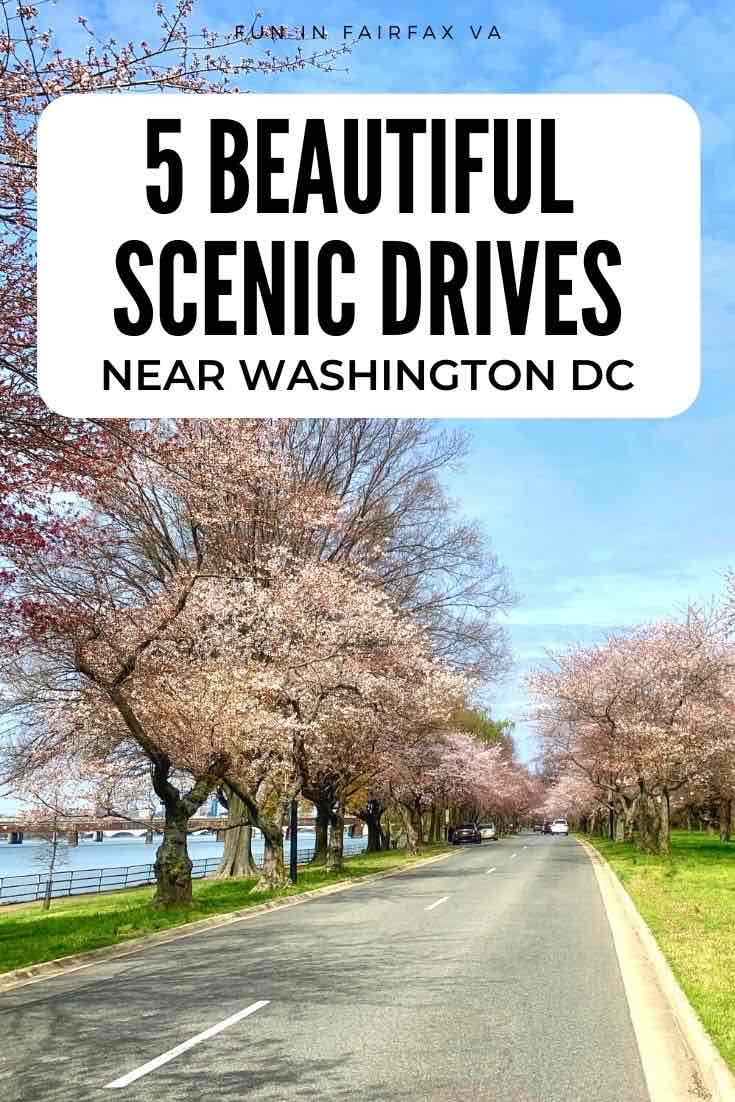5 scenic drives in Virginia perfect for outdoor adventure or a relaxed road trip near Washington DC.