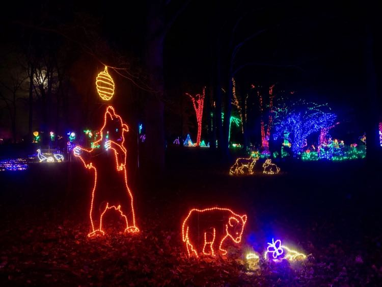 Bears and other wildlife holiday lights at Meadowlark Gardens in Northern Virginia
