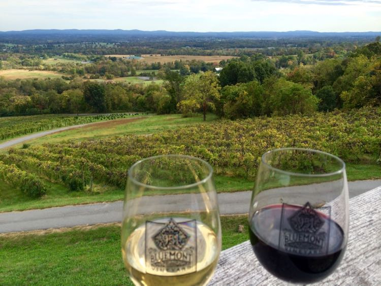 View from Bluemont Vineyards, one of our picks for Northern Virginia Wine Country vacation rentals