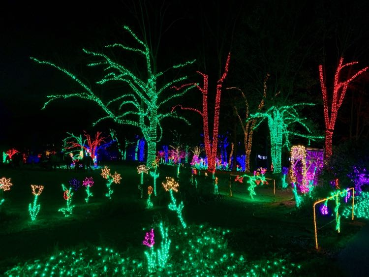 Garden Lights at Meadowlark