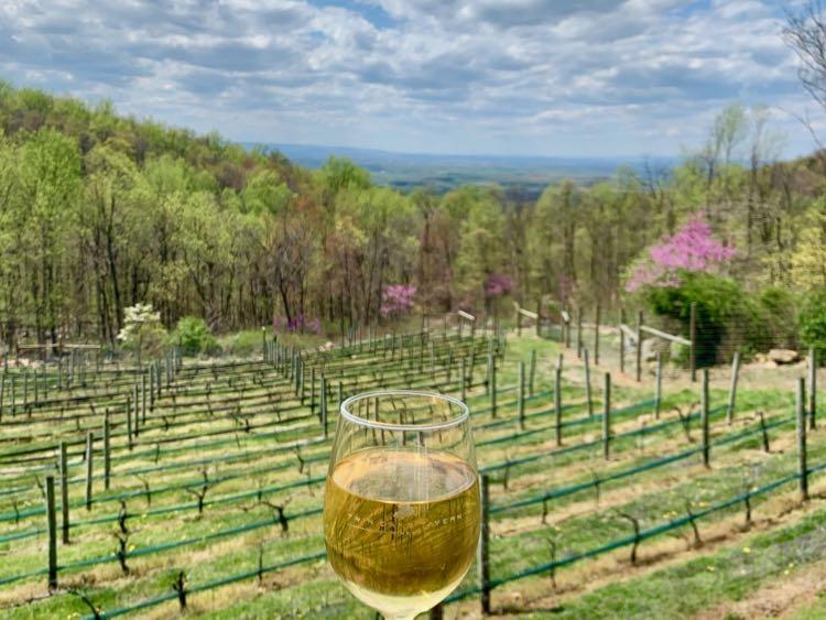 Hike and Wine day trips near Washington DC