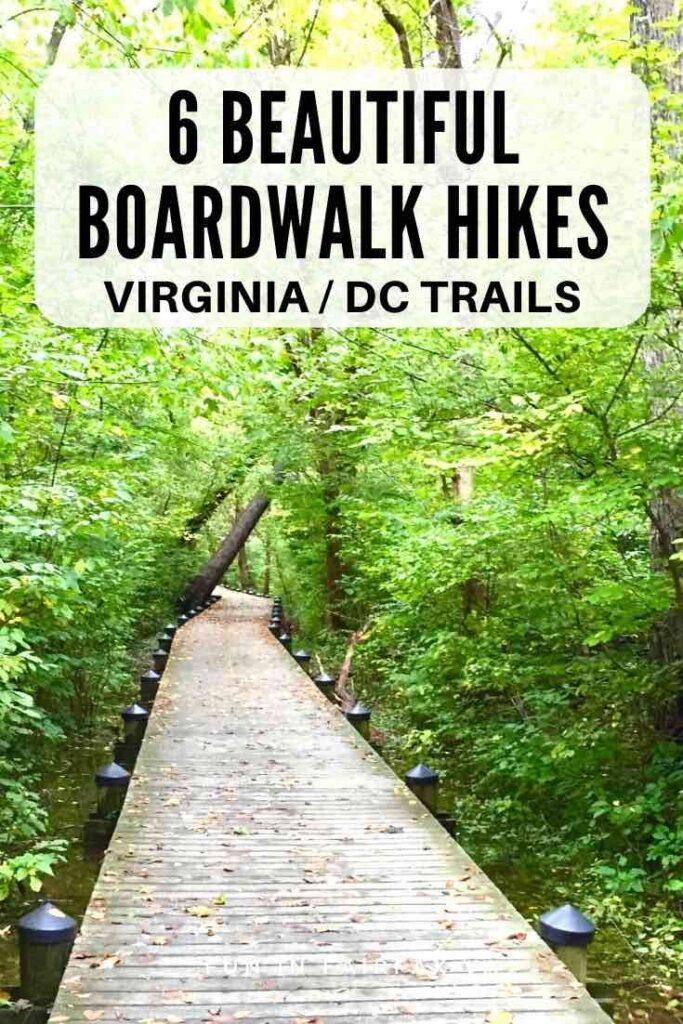 6 beautiful boardwalk hikes on Virginia trails near Washington DC