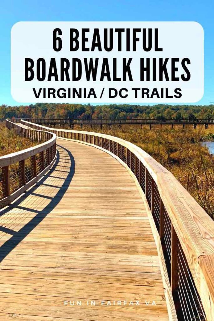 Explore 6 beautiful boardwalk hikes in Northern Virginia to get close to nature and unique wetland habitats near Washington DC.