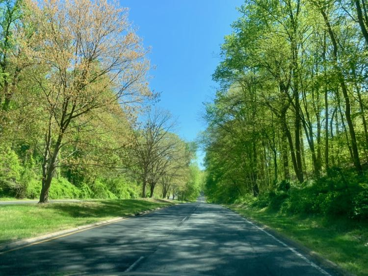 George Washington Memorial Parkway scenic drive in Spring