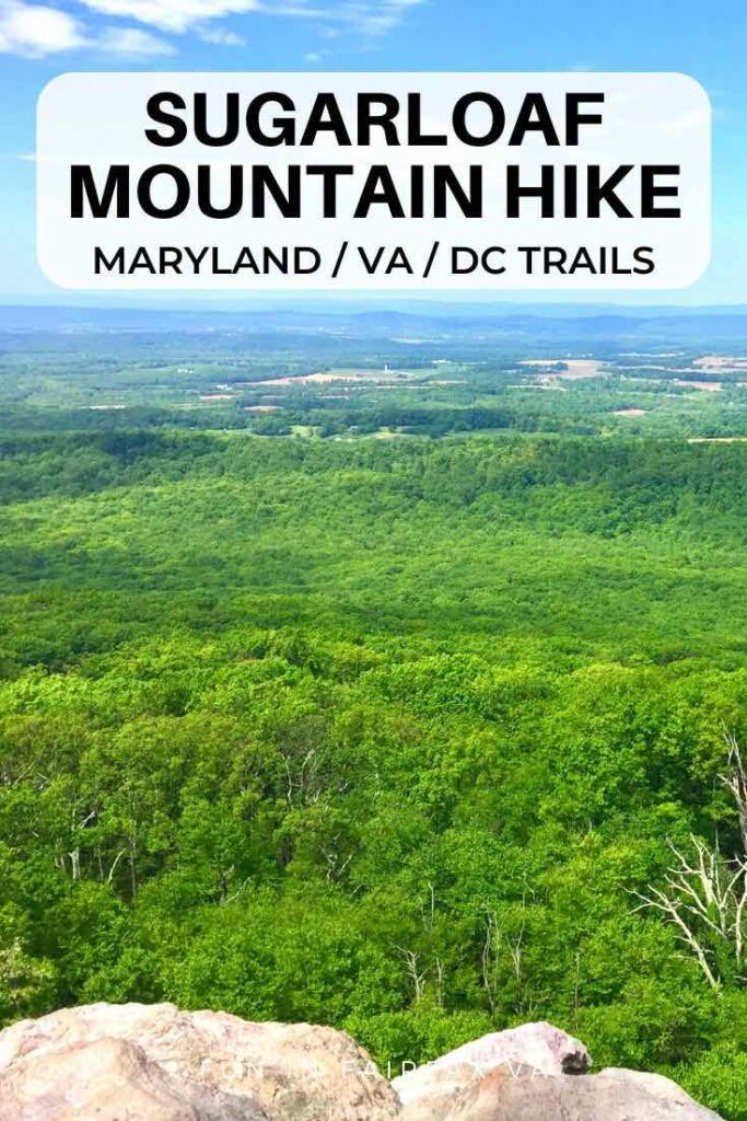 A Sugarloaf Mountain hike offers beautiful views of the Maryland countryside, picnicking, and a convenient network of trails close to Washington DC.