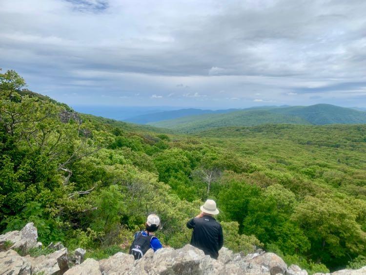 Enjoying Stony Man Summit view south