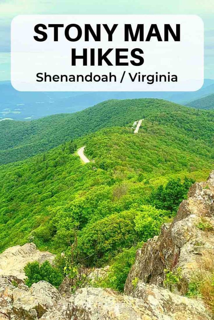 Explore three Stony Man trail hikes to spectacular views and beautiful woodlands on the second highest mountain in Shenandoah National Park, Virginia.