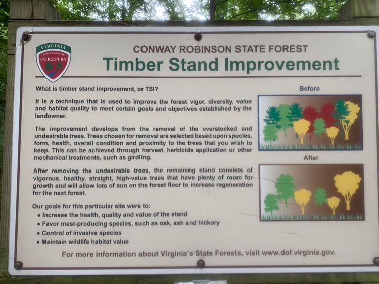 Conway Robinson Forest education sign