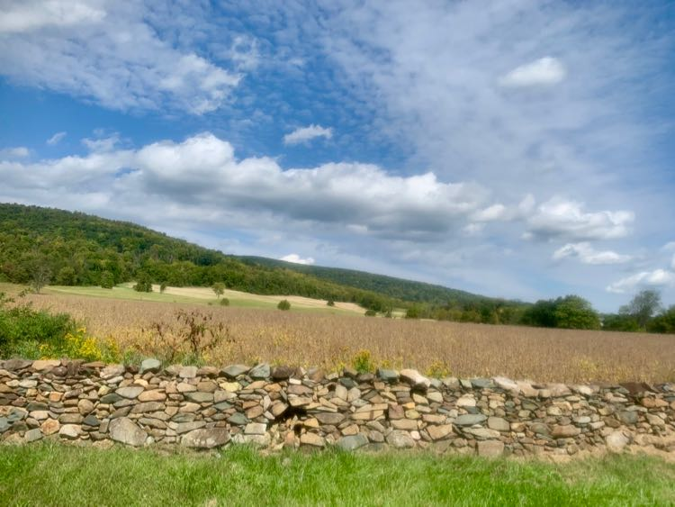 Stone wall and view in Upperville Virginia