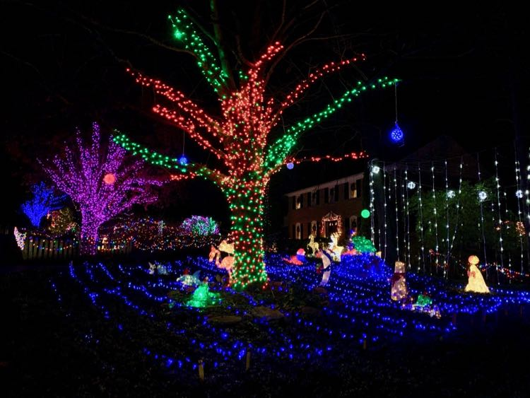 Holiday lights at 10203 Lawyers Vienna VA