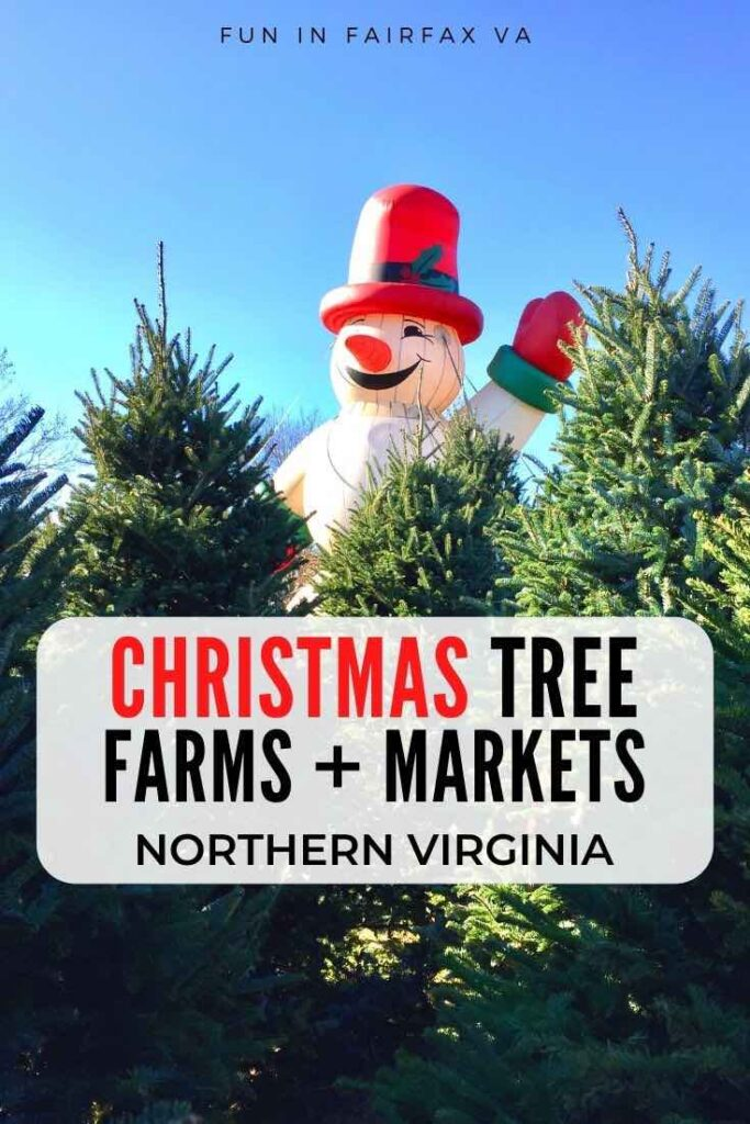Where to buy Christmas trees in Northern Virginia at cut your own tree farms and popular garden centers and markets near DC