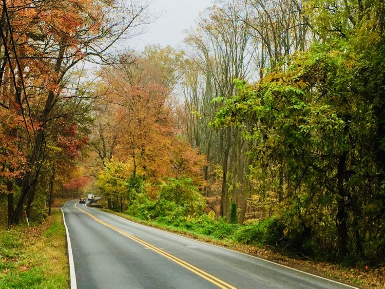 Great Falls Scenic Drive fall foliage on Georgetown Pike