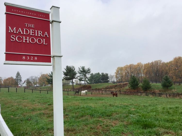 Horses in the field at the Madeira School