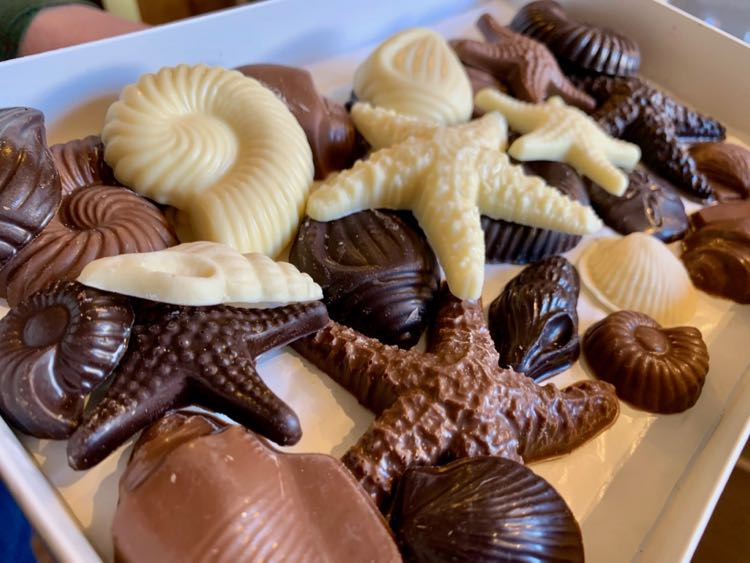 Edible sealife at Chesapeake Chocolates Reston VA