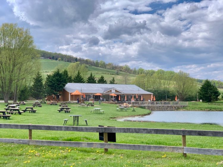 Henway Hard Cider Company has a beautiful setting in Bluemont VA