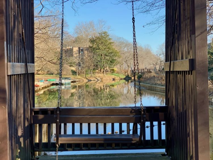 The Swing at Lake Anne is one of our favorite romantic places in Reston Virginia